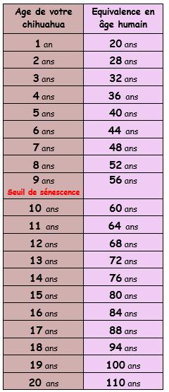 Tableau d'équivalence âge du chihuahua / âge humain