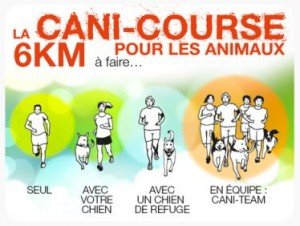 cani course de la spa